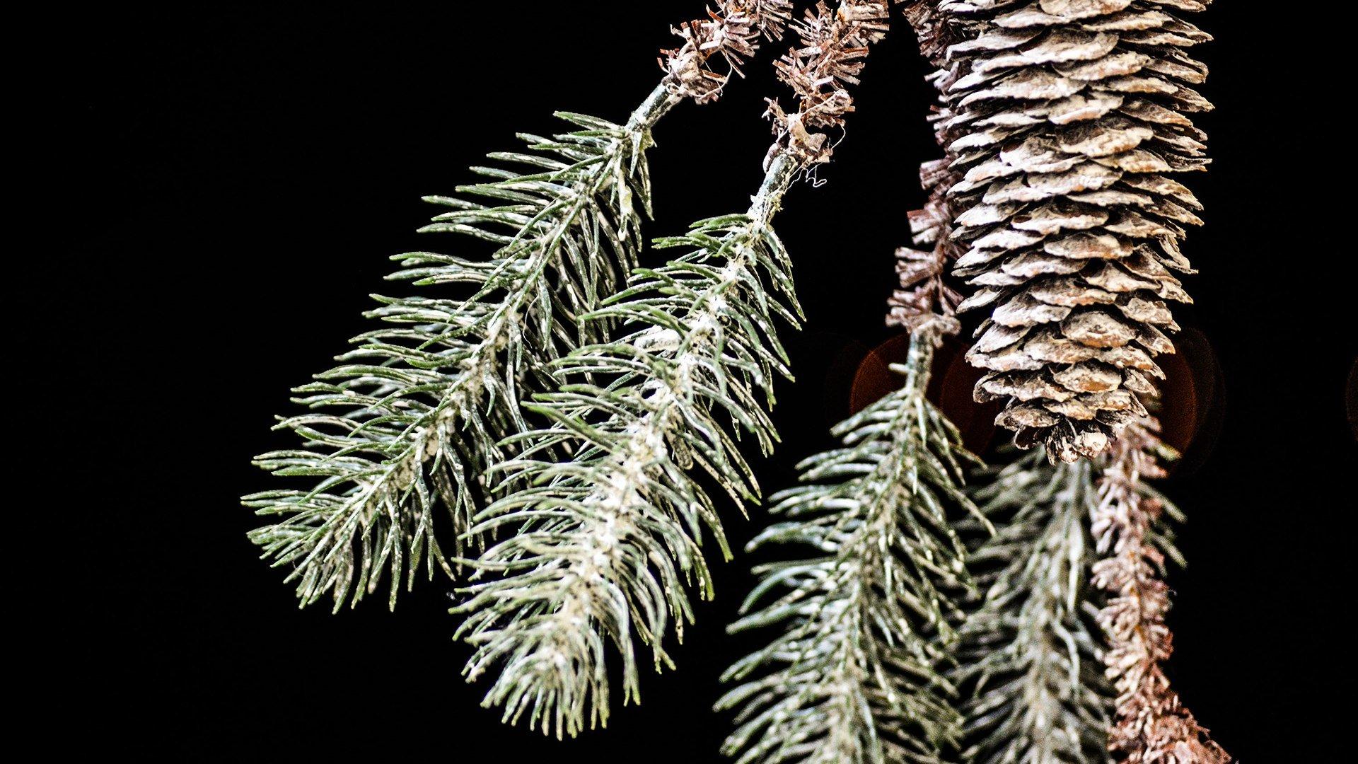 Weihnachten Oberbayern Tegernsee, © Florian Liebenstein