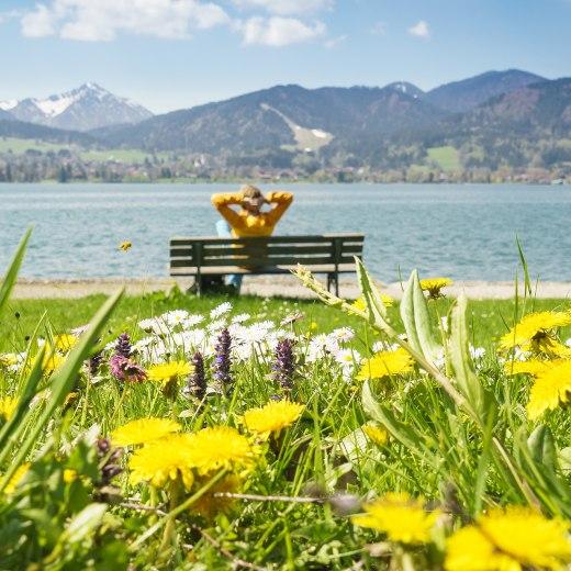 Entspannen am Tegernsee im Frühling, © Dietmar Denger