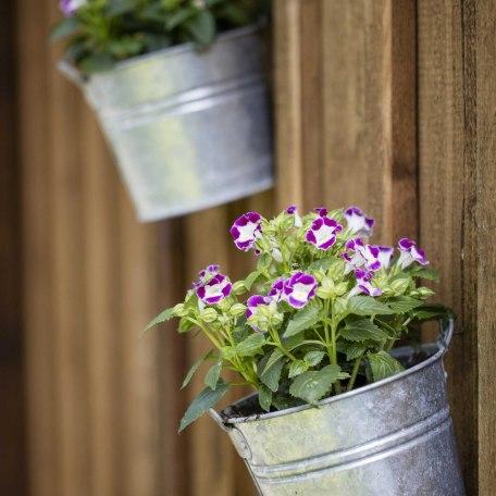 Unsere Blumendeko..., © im-web.de/ Gäste-Information Schliersee in der vitalwelt schliersee