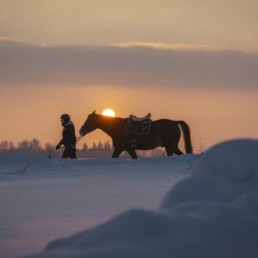 Reiten Winter Bayern, © Dietmar Denger