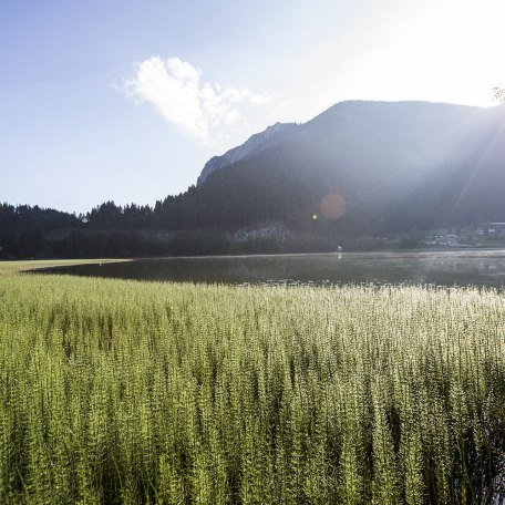 Landschaft Spitzingsee, © Hansi Heckmair