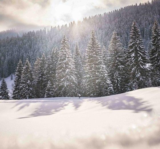 Winterstimmung Oberbayern, © Dietmar Denger