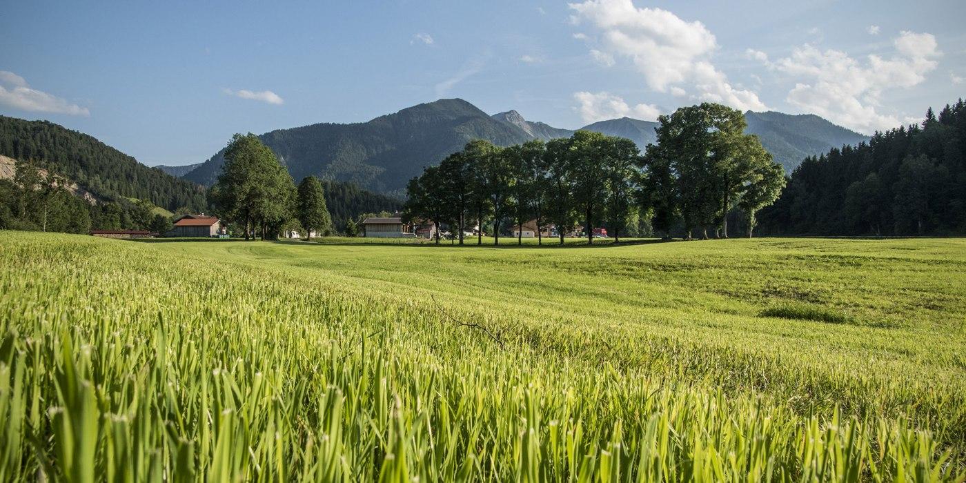 Kräuterdorf Fischbachau Bayern, © Florian Liebenstein