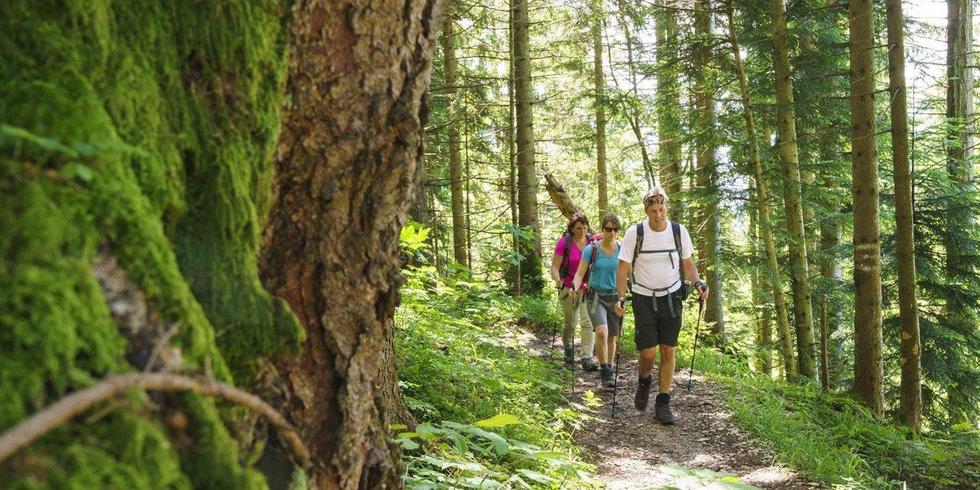 Wandern rund um Fischbachau ist Erholung pur, © Dietmar Denger